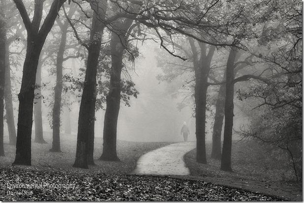 20131030-Pathway-bw-watrmrk_9441