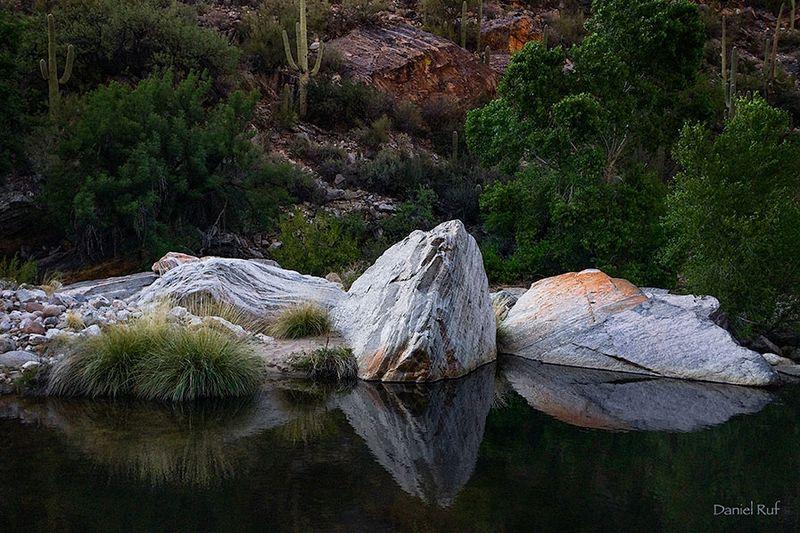 20160324-Sabino-Rocks_2386