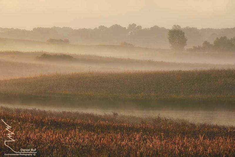20200913-Delicate-Wetlands-NIK_U3A0126-Edit