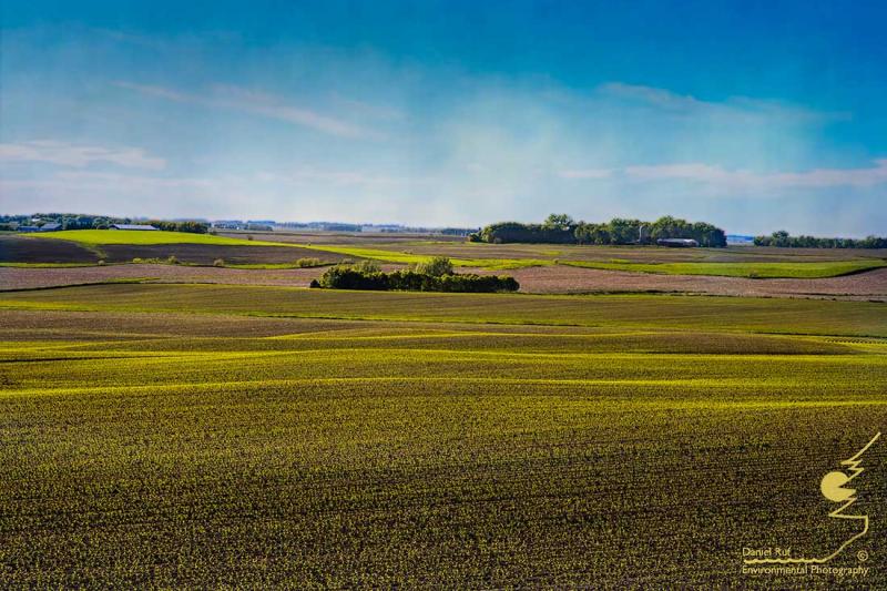 20200529-Spring-Fields-Txt_U3A8818-Edit-Edit